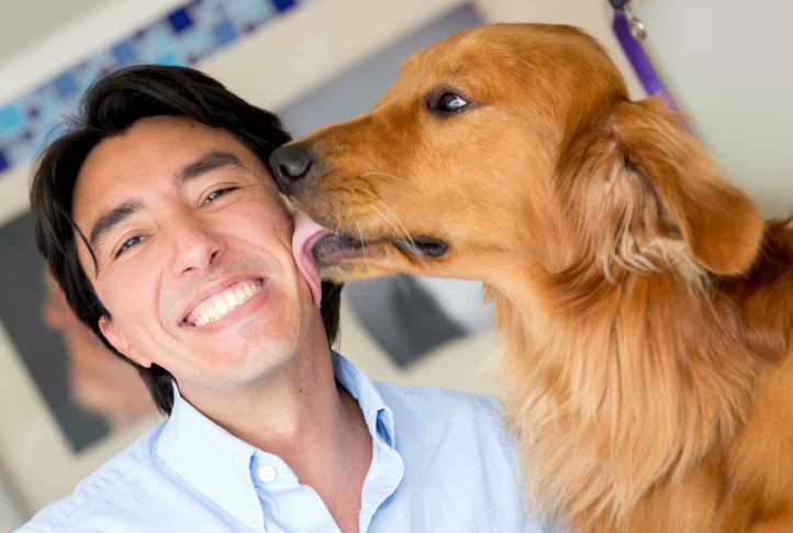 Why dogs love to lick?