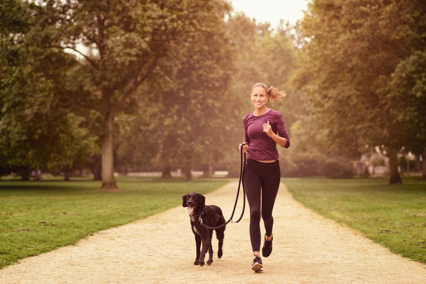 Ways to get fit with your dog