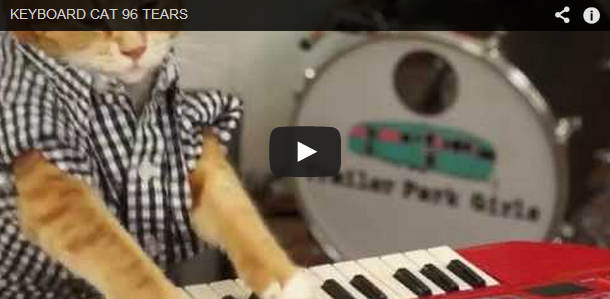 Throwback 'Purrs'-day: Still can't get enough of Keyboard Cat