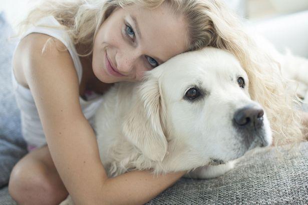 Why You Shouldn't Hug Your Dog
