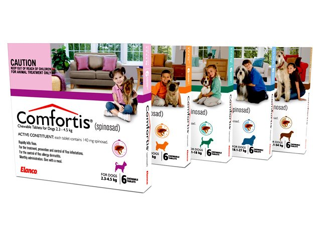 Get Comfortable with Comfortis