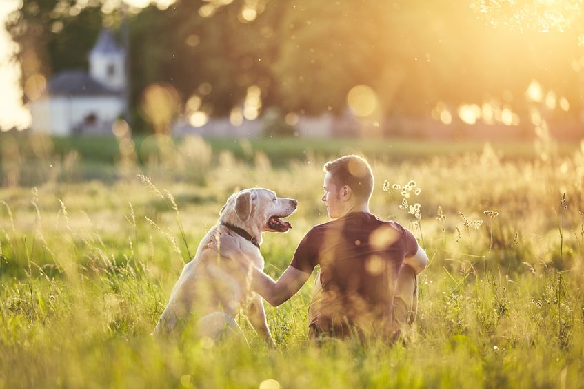 Five questions to ask yourself before adopting a pet