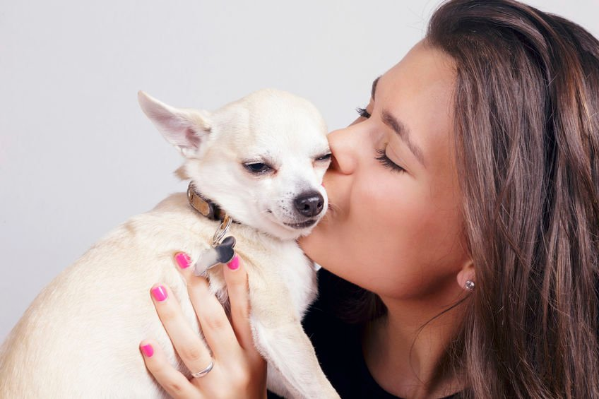 Can dogs feel humans' emotions?