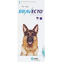 Bravecto Chews