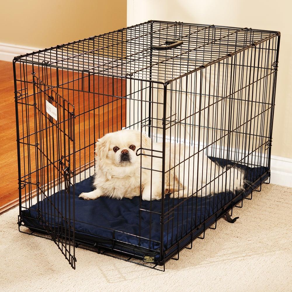 Crate que treina seu cão