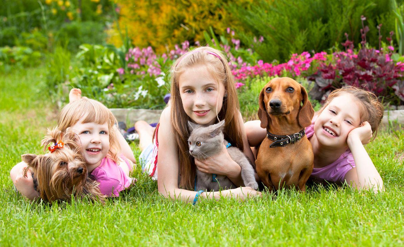 Os benefícios das crianças que têm animais de estimação