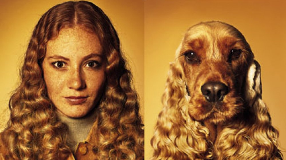 Dog-a-likes: Pets Who Look Like Their Owners