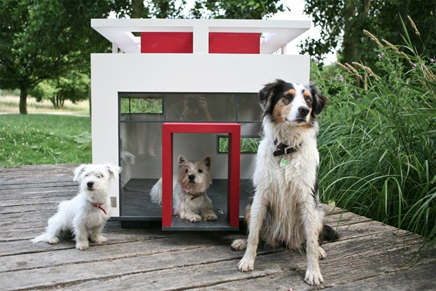 Super Modern Dog Kennels