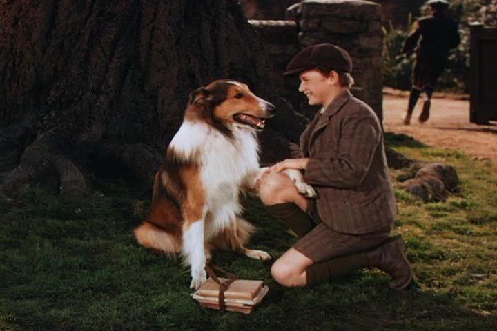 Celebrity Pets: Lassie