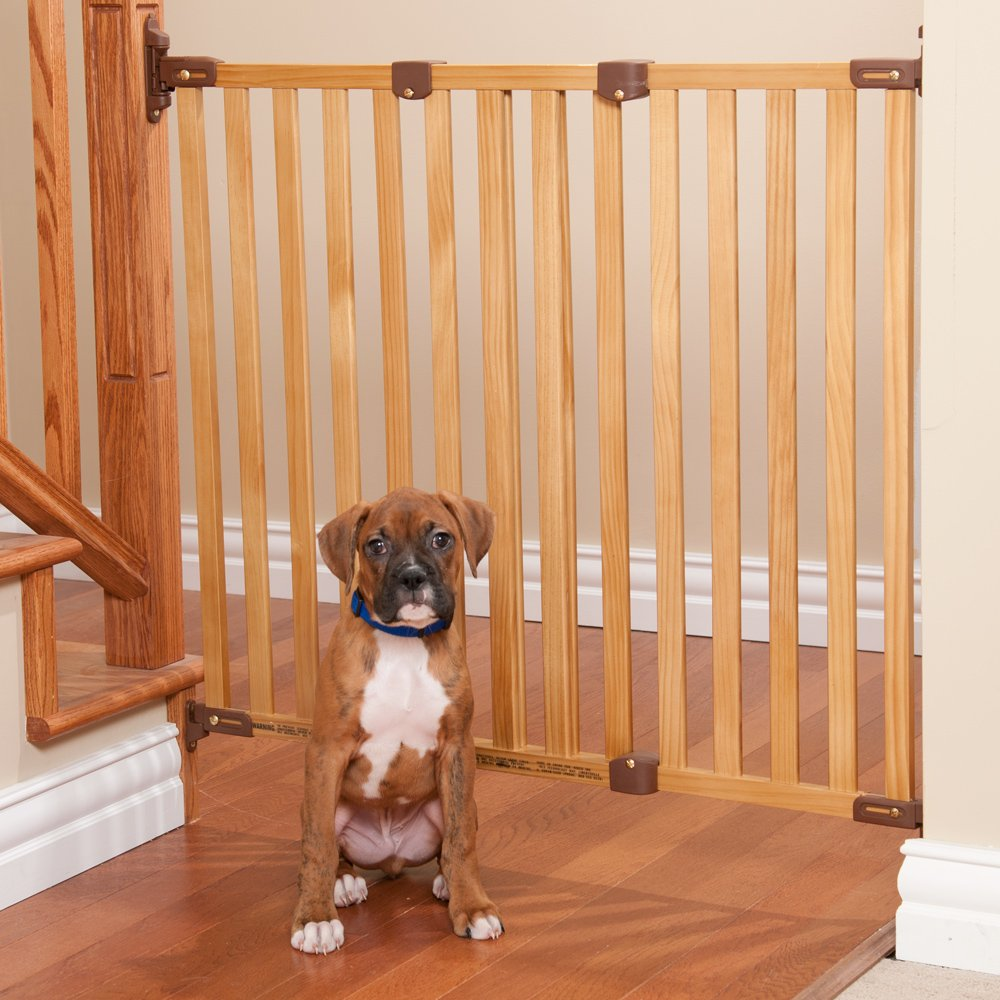 Choosing a Gate For Your Dog