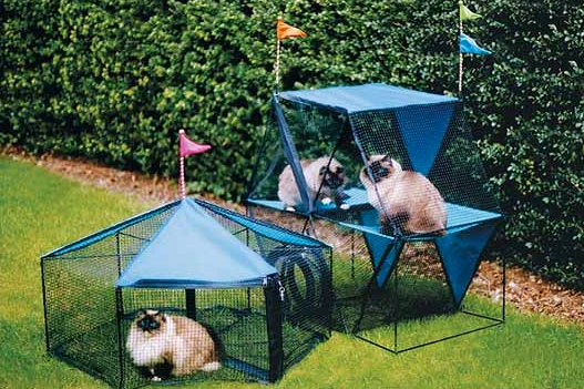 Why Play Houses Are Important For Cats