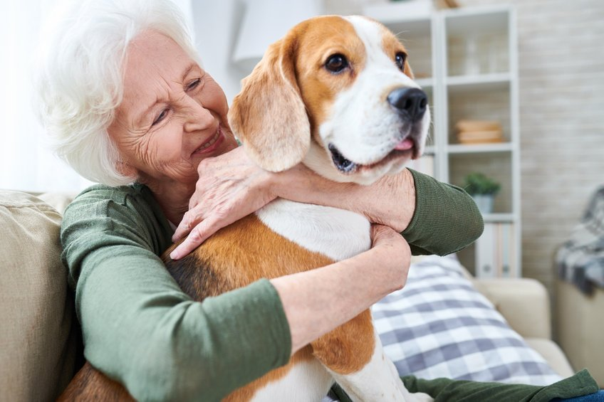How to help dogs with arthritis
