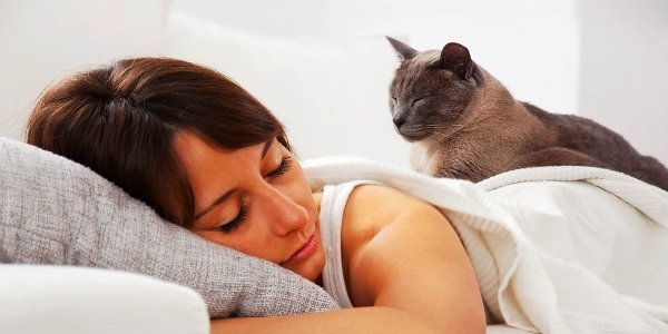 Can Cats Tell When We Are Sick?