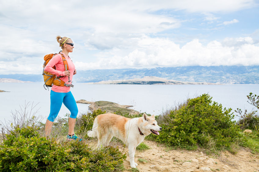The Do's and Don'ts of Hiking with Pets