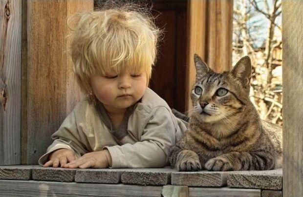 Ajudar as crianças a lidar com a perda de um animal de estimação