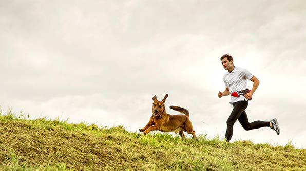 Should You Walk Your Dog Every Day?