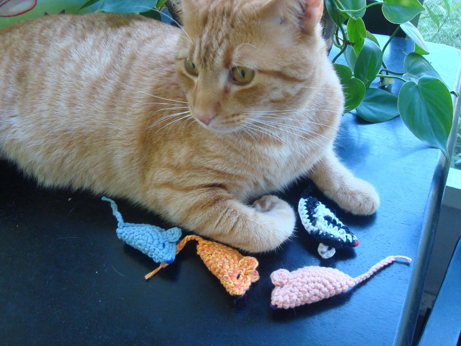 The Cat and Mouse Game: Why Cats Love Mouse Toys