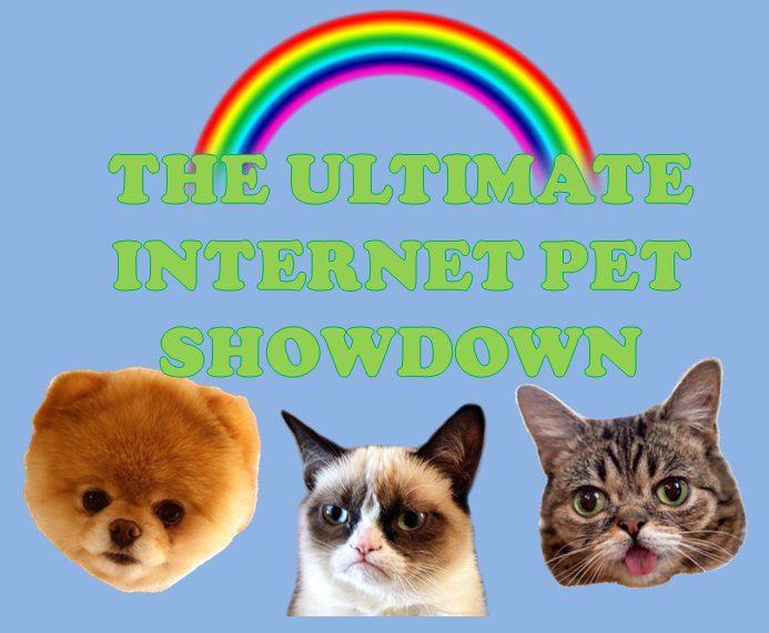 Grumpy Cat vs Boo vs Lil Bub - Internet Pet Showdown [INFOGRAPHIC]