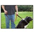 Rok Straps Dog Leash (Red) 5-15 kg (10-30 lbs)