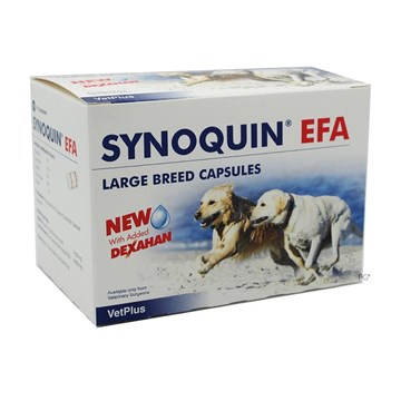 Synoquin EFA Capsules for Large Dogs Over 50 lbs (25 kg) - 120 Pack